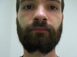 beards-frenchfork