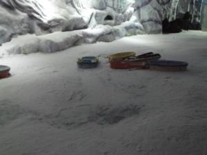 snowworldindia