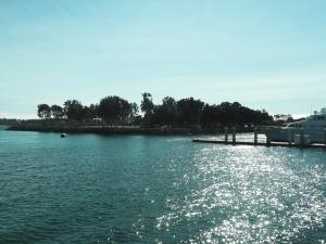 san-diego-marina