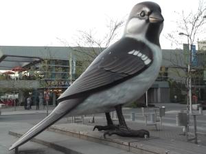 giant-bird-vancouver