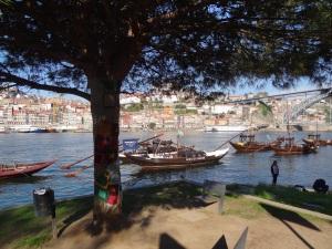 portoboats