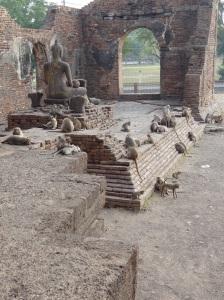 monkey-temple-thailand