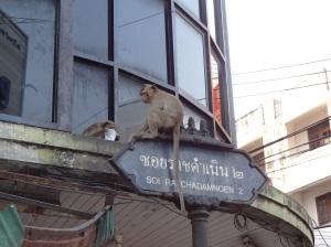 lopburi-street-sign