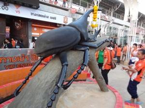 chiang-rai-stag-beetle